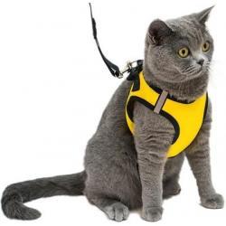 Комплект для кошек и собак Дарэлл Конфетти-ТОП №4, поводок и шлейка, эко-кожа, обхват груди 32-38 см