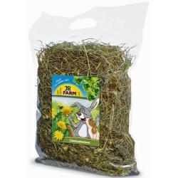Сено для грызунов JR Farm, с добавлением лугового одуванчика, 500 г